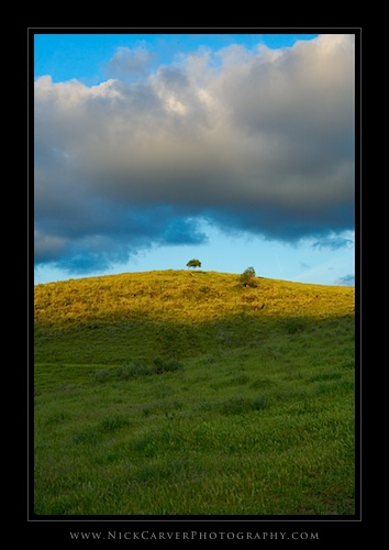 Green Hills - Orange County, CA